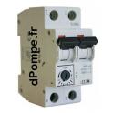 Disjoncteur Magnéto-Thermique Réglable 10 A - dPompe.fr
