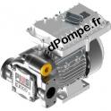 Pompe Atex Haut Débit Piusi EX100 l/min 2 bar Mono 230 V 50 Hz 1035 W - dPompe.fr