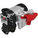 Groupe de Transvasement Atex Haut Débit Piusi EX100 DRUM 2 bar 100 l/mn Mono 230 V 60 Hz 874 W - dPompe.fr