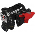 Groupe de Transvasement Atex Haut Débit Piusi EX140 DRUM 2 bar 140 l/mn Mono 230 V 50 Hz 1150 W - dPompe.fr