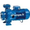 Pompe de Surface Speroni CS 32-250B Fonte de 9 à 30 m3/h entre 81 et 68 m HMT Tri 400 V 11 kW - dPompe.fr