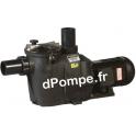 Pompe de Piscine Hayward RS II RS30111 de 1 à 21,5 m3/h entre 15,5 et 1 m HMT Mono 230 V 0,75 kW - dPompe.fr