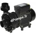 Pompe de Piscine Acis SOLUBLOC 2V Bi-vitesse de 2 à 30 m3/h entre 12 et 6 m HMT Mono 230 V 2 kW - dPompe.fr