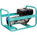 Groupe Électrogène ACCESS 8000 Essence Monophasé 8,8 kVA 6,6 kW - dPompe.fr