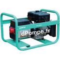 Groupe Électrogène TRISTAR 6510 EX + DIFF Essence Triphasé 7,3 kVA 5,8 kW - dPompe.fr