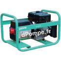 Groupe Électrogène TRISTAR 8510 EX + DIFF et AVR Essence Triphasé 9 kVA 7,2 kW - dPompe.fr