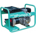 Groupe Électrogène TRISTAR 6510 DTXL15 YN DE + AVR Diesel Triphasé 6,5 kVA 5,2 kW - dPompe.fr