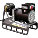 Groupe Électrogène sur Prise de Force AGRO 75 4P AVR 75 kVA Puissance Tracteur Conseillée 155 CV - dPompe.fr
