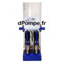 Module d'Expansion 2 Pompes 1 Déverseur Grundfos AQUA-STABLE D 310/1-1045 Hauteur Statique 10 à 45 m 1,5 kW - dPompe.fr