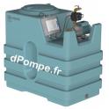 Récupérateur d'Eau de Pluie Calpeda KEP 1100 ID NGXM3-100 de 1 à 3,6 m3/h entre 39,4 et 21,7 m HMT Mono 230 V 0,65 kW - dPompe.f
