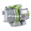 Pompe de Surface Renson WESURF 3,1 m3/h max à 35 m HMT max Mono 230 V 0,6 kW - dPompe.fr