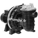 Pompe de Piscine Pentair LA STARITE P-STR-071 de 3 à 16,3 m3/h entre 17,4 et 3,6 m HMT Mono 230 V 0,55 kW - dPompe.fr