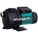 Pompe de Piscine Eau Salée Espa POOL T de 0,5 à 2,8 m3/h entre 45 et 25 m HMT Tri 400 V 0,75 kW