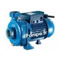 Pompe Monocellulaire Fonte Renson de 2,4 à 16,8 m3/h entre 20 et 10,5 m HMT Mono 230 V 0,74 kW