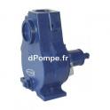 Pompe Arbre Nu Renson AA7PLC de 3 à 45 m3/h entre 46 et 7 m HMT pour Moteur 6 kW