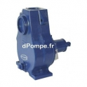 Pompe Arbre Nu Renson AA20PL de 63 à 171 m3/h entre 31 et 12 m HMT pour Moteur 15 kW