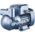 Pompe de Surface Pedrollo à Anneau Liquide CKR 90 E-Adjuvant de 0,3 à 3 m3/h entre 49 et 13 m HMT Tri 230-400 V 0,75 kW