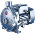 Pompe de Surface Pedrollo Monocellulaire CP 190 de 1,8 à 8,4 m3/h entre 46 et 26 m HMT Tri 230-400 V 1,5 kW