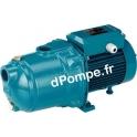 Pompe de Surface Multicellulaire Calpeda MGP 202 Fonte 1 a 4,5 m3/h entre 19 et 6,5 m HMT 400 V 0,33 kW