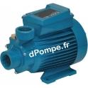 Pompe de Surface Calpeda CTM 60 à Accélération Périphérique 0,48 à 2,3 m3/h entre 41 et 5 m HMT MONO 230 V 0,33 kW