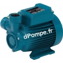 Pompe de Surface Calpeda CT 61 à Accélération Périphérique 0,48 à 2,3 m3/h entre 41 et 5 m HMT TRI 400 V 0,33 kW