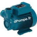 Pompe de Surface Calpeda CTM 61 à Accélération Périphérique 0,48 à 2,3 m3/h entre 41 et 5 m HMT MONO 230 V 0,33 kW