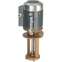 Pompe Verticale Calpeda BVT 65-170 avec Hydraulique Immergée 0,3 à 3 m3/h entre 42,5 et 2 m HMT Tri 400 V 0,45 kW