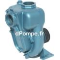Pompe de Surface à Poulie Calpeda 01 1/2 RAP de 6 à 18 m3/h entre 16 et 7 m HMT