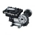 Pompe PIUSI EX50 12 V DC ATEX 50 l/mn 250 W