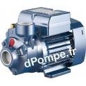 Pompe de Surface Pedrollo à Aspiration Axiale PK 60 de 0,3 à 2,4 m3/h entre 38 et 5 m HMT Tri 230-400 V 0,37 kW