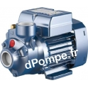 Pompe de Surface Pedrollo à Aspiration Axiale PKm 80 de 0,3 à 3 m3/h entre 66 et 22 m HMT Mono 220-230 V 0,75 kW