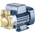 Pompe de Surface Pedrollo à Aspiration Latérale PV 55 de 0,12 à 0,6 m3/h entre 46 et 10 m HMT Tri 220 460 V 60 Hz 0,18 kW