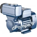 Pompe de Surface Pedrollo Auto-amorçante PKS 65 de 0,3 à 3 m3/h entre 50 et 8 m HMT Tri 230-400 V 0,50 kW