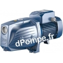 Pompe de Surface Pedrollo à Jet Venturi JSWm 3BH de 0,6 à 4,8 m3/h entre 70 et 39 m HMT Mono 220-230 V 1,5 kW