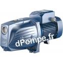 Pompe de Surface Pedrollo à Jet Venturi JSW 3BM de 0,6 à 7,2 m3/h entre 58 et 30 m HMT Tri 230-400 V 1,5 kW