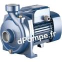 Pompe de Surface Pedrollo Mono-cellulaire NGA 1A de 3 à 21 m3/h entre 19,5 et 6 m HMT Tri 230-400 V 0,75 kW