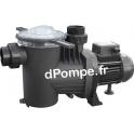 Pompe de Piscine Pedrollo WINNER 100T IE3 de 6 à 24 m3/h entre 17 et 3 m HMT Tri 230-400 V 0,75 kW